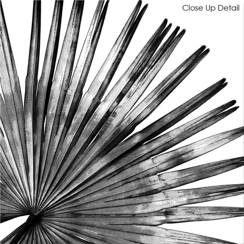 Black and White Botanical Art Prints - Palm Leaf Print - product images  of