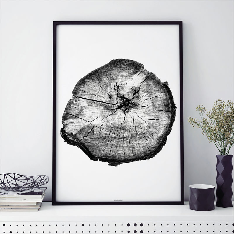 Botanical Prints - Tree Ring Print - Monochrome Art Prints - product images  of