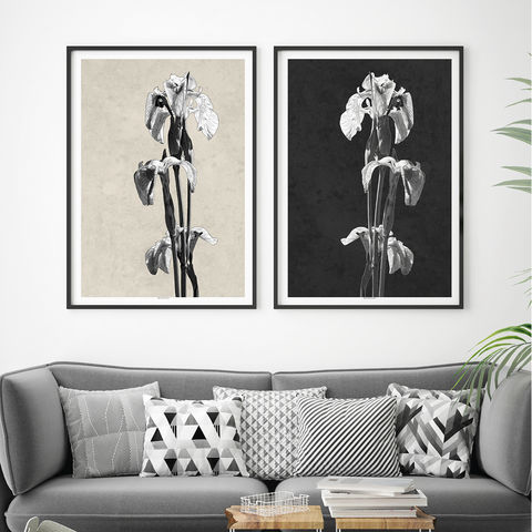 Set,of,2,Botanical,Art,Prints,-,Iris,Floral,Minimalist,Black,and,White,Set of 2 Botanical Art Prints, Iris Floral Prints, Minimalist Prints, Black and White Art