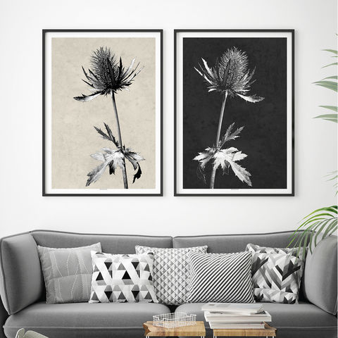 Botanical,Prints,-,Set,of,2,Wall,Art,Thistle,Minimalist,Black,and,White,set of 2 wall art prints, botanical prints, thistle prints, minimalist art, black and white art