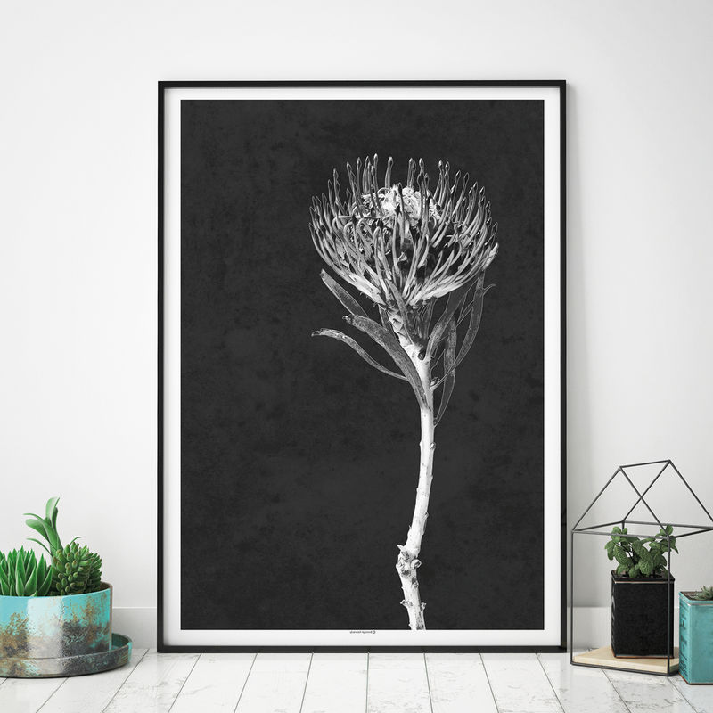 Set of 2 Modern Botanical Art Prints - Floral Prints - Minimalist Prints - Black and White Art - product images  of