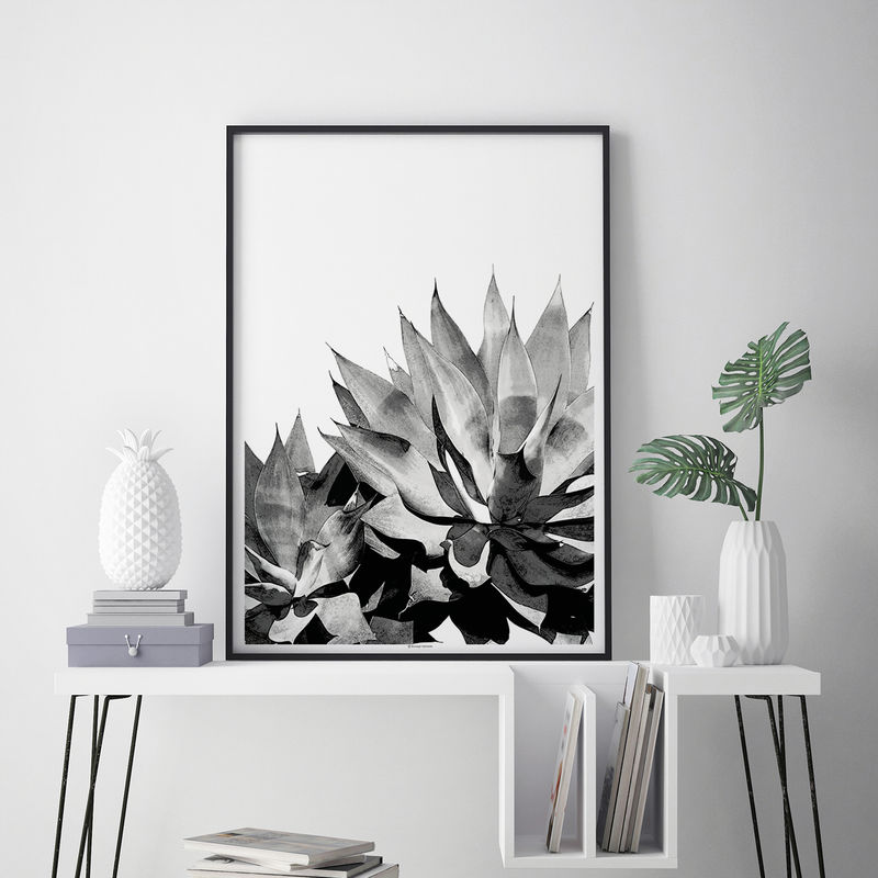 Botanical Wall Art Print - Agave Succulent Art Print - Living Room Art - product images  of