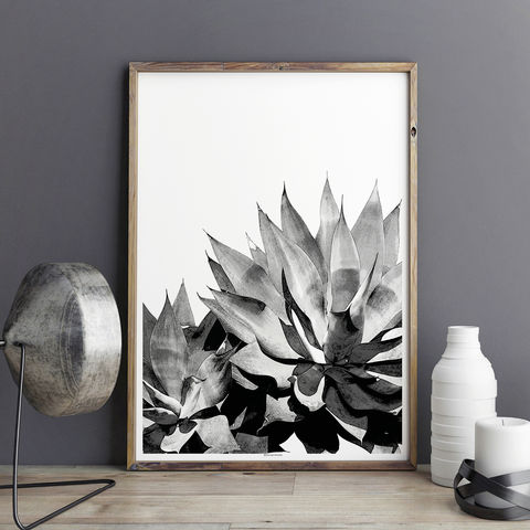 Botanical,Wall,Art,Print,-,Agave,Succulent,Living,Room,botanical wall art print, botanical art, botanical print, wall art print, succulent art print, living room art