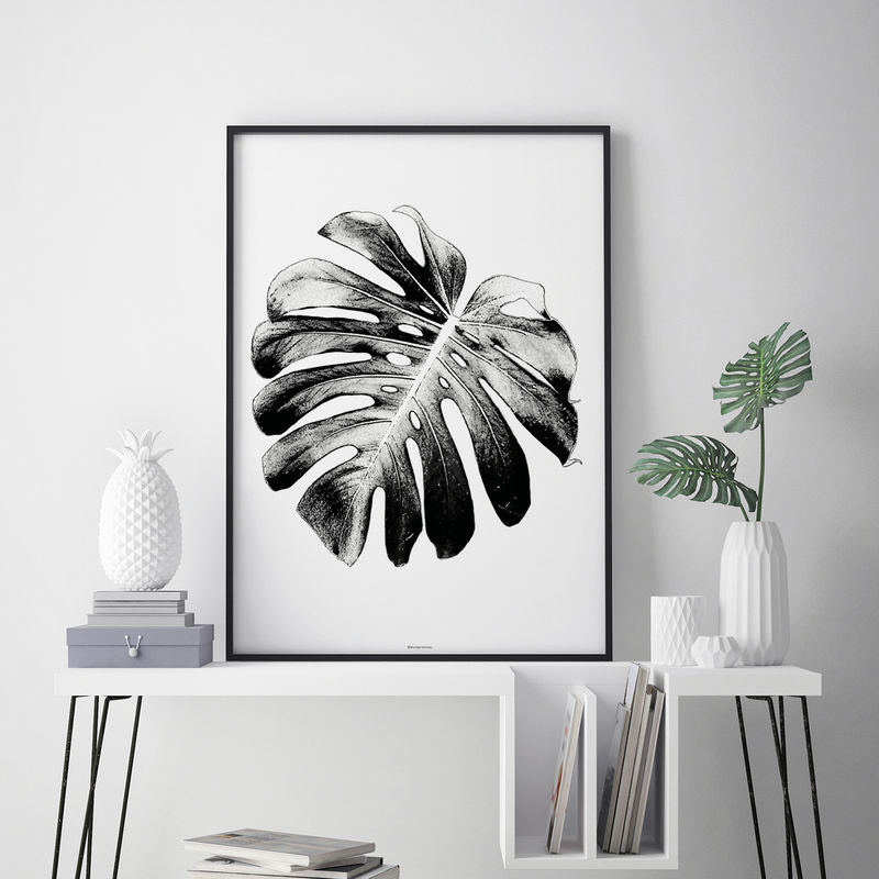 Monstera Leaf Print - Botanical Wall Art Print - Black and White Print – Botanical Art Print  - product images  of