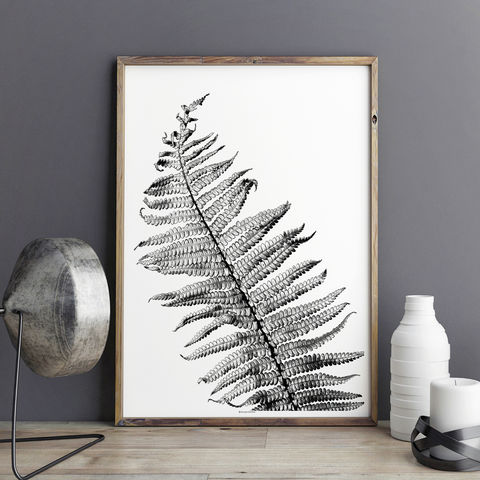 Fern,Leaf,Art,Print,-,Wall,Botanical,–,Large,fern leaf print, fern leaf art print, leaf art print, wall art print, botanical print, large wall art
