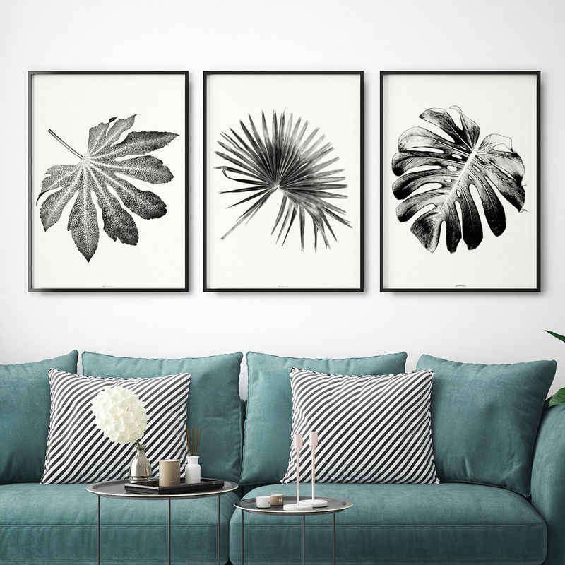 Set of 3 Prints - Botanical Leaf Wall Art - Black and White Wall Art - Living Room Art - product images  of