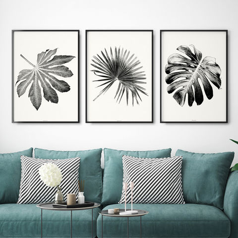 Set,of,3,Botanical,Leaf,Prints,-,Black,and,White,Wall,Art,Living,Room,Set of 3 Botanical Leaf Prints - Black and White Wall Art - Living Room Art