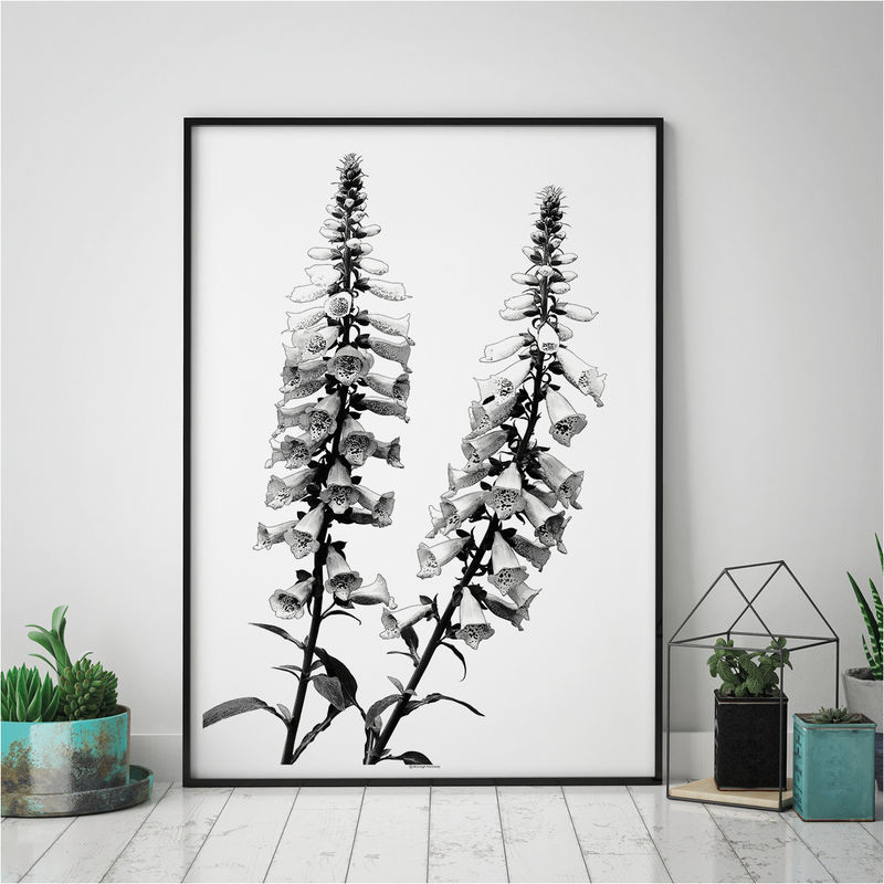 Botanical Art Print - Minimalist Art Print - Floral Art - Large Wall art - product images  of