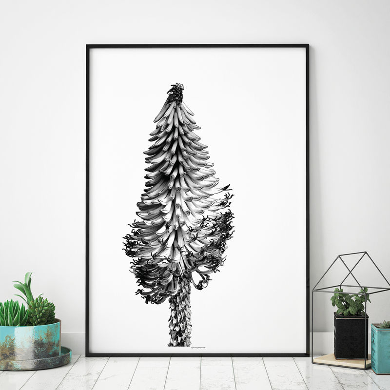 Botanical Art Print - Floral Prints - Large Wall art - product images  of
