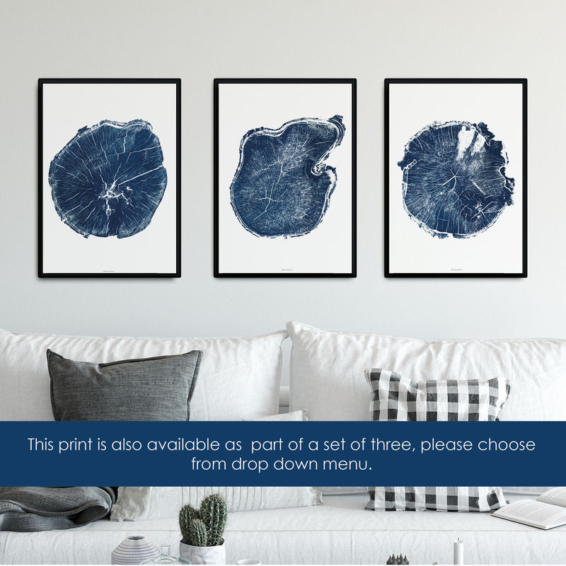 Tree Ring Print - Minimalist Wall Art - Indigo Blue  - product images  of