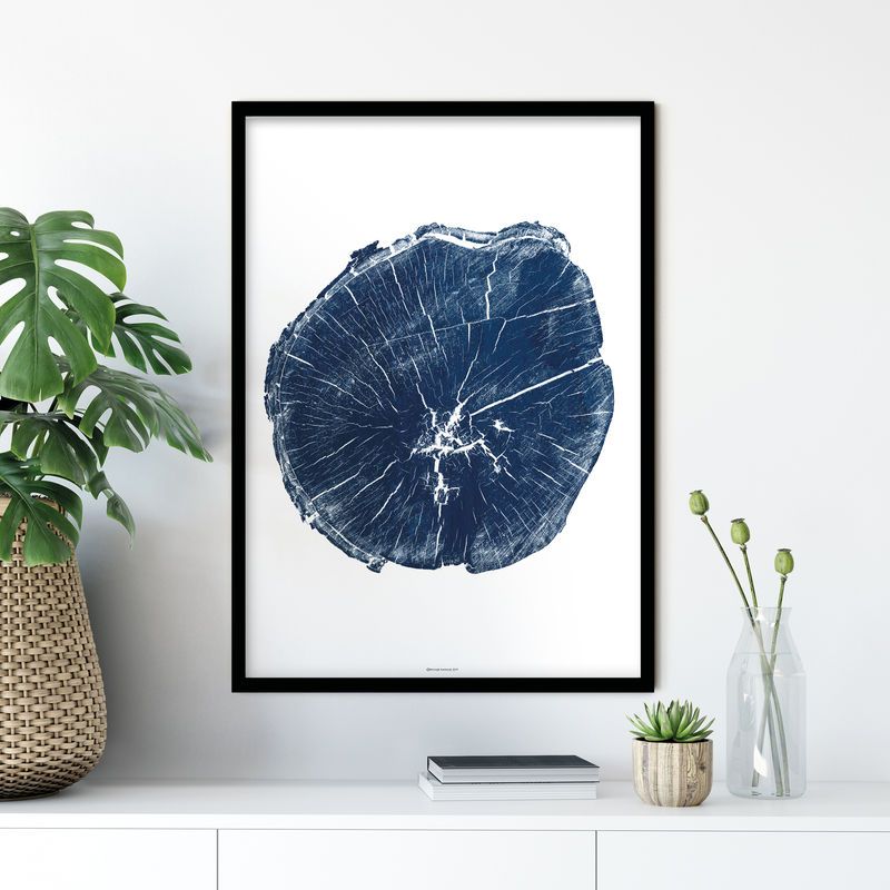 Tree Ring Wall Art - Minimalist Print - Living Room Art Blue  - product images  of