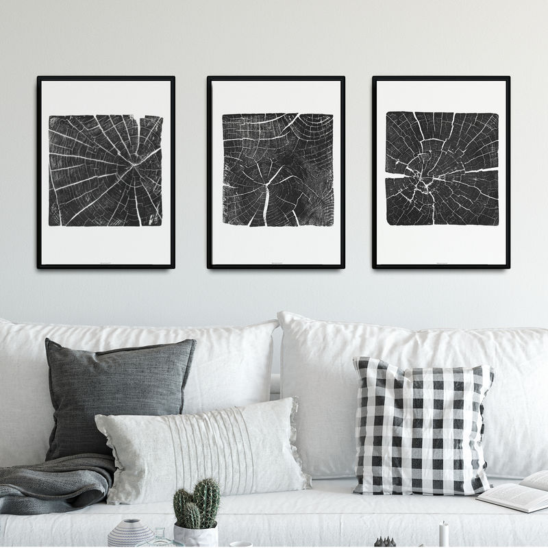 Set of 3 Tree Section Wall Art Prints - Nature Inspired Home Decor - product images  of