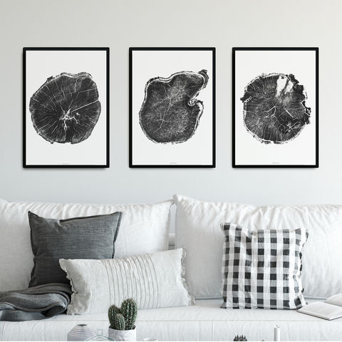 Set,of,3,Tree,Ring,Art,Prints,-,Triptych,Minimalist,Wall,Set of 3 Tree Ring Art Prints - Triptych - Minimalist Wall Art