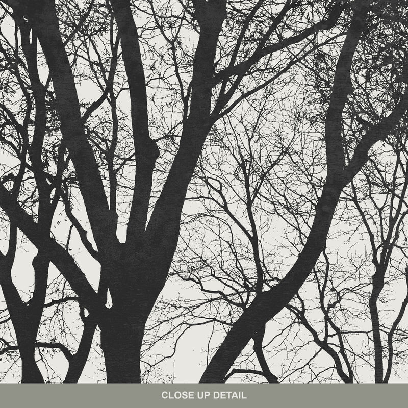 Set of 3 Tree Silhouette Fine Art Prints - Minimalist Prints Black and White - product images  of