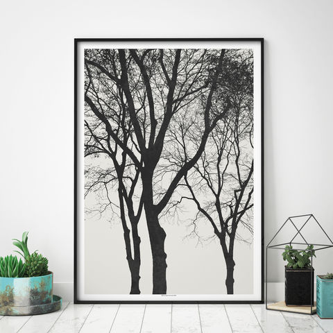 Autumnal,Tree,Art,Prints,-,Minimalist,Fine,Print,Nature,Autumnal Tree Art Prints - Minimalist Fine Art Print - Nature Prints