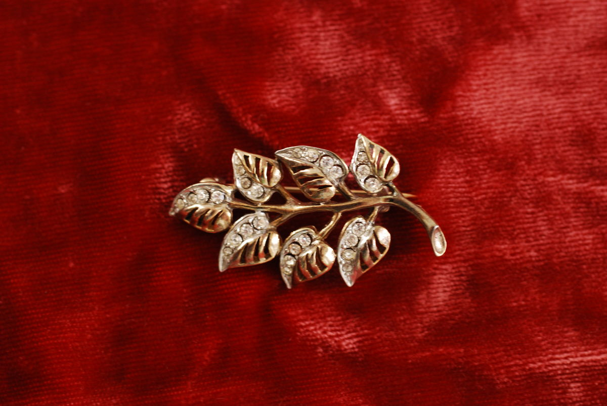 Vintage Leaves Brooch with Rhinestones - product images  of