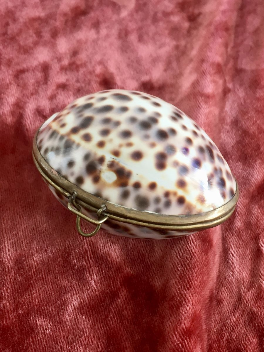 Antique Victorian Shell Coin Purse - product images  of