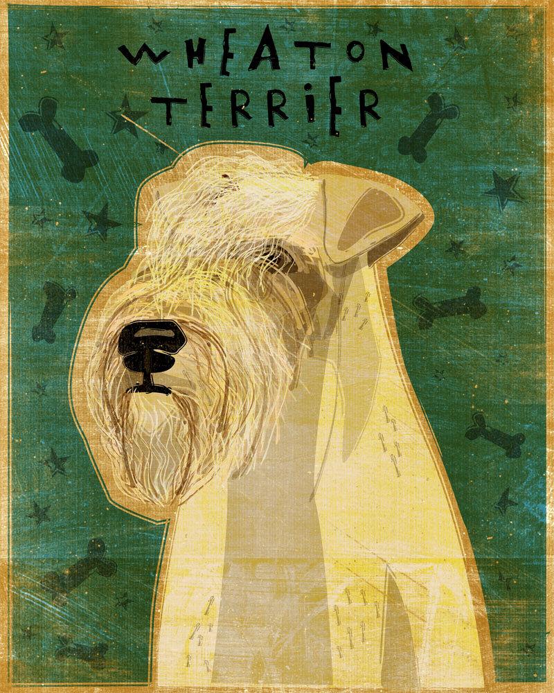 Wheaten Terrier Art Print 8\