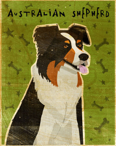 Australian,Shepherd,Print,-,Various,Colors,Art,Illustration,digital,whimsical,cute,dog,animal,australian,shepherd,black,blue merle,red merle,merle,paper,ink