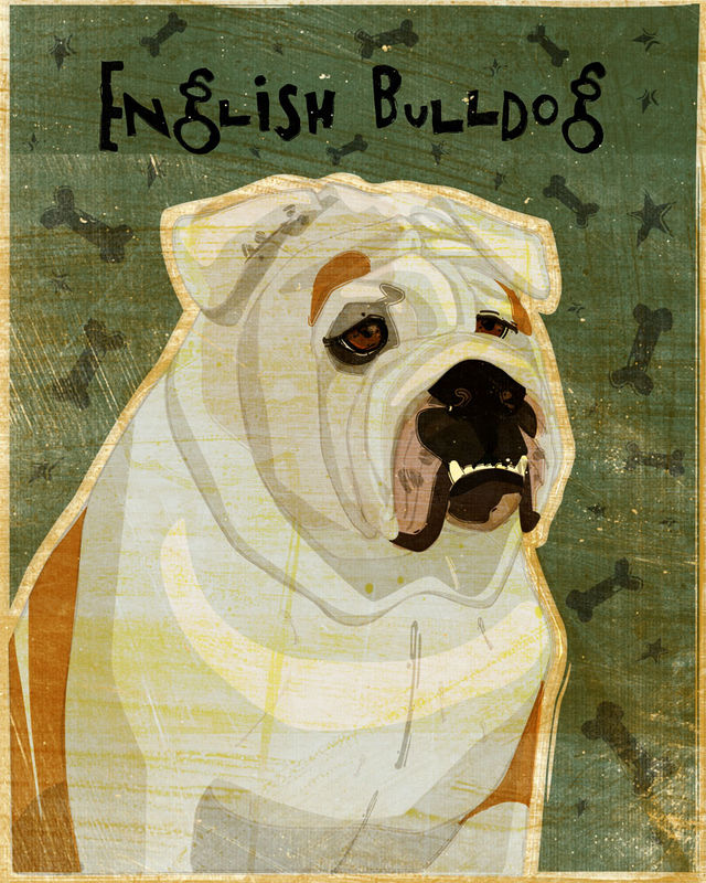 English Bulldog Print - Various Colors - product images  of