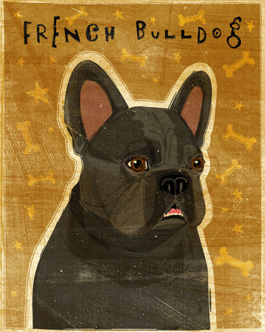 French,Bulldog,Print,-,Various,Colors,Art,Illustration,digital,whimsical,cute,dog,animals,animal,french,bulldog,Black,Brindle,White,Fawn,cream,paper,ink