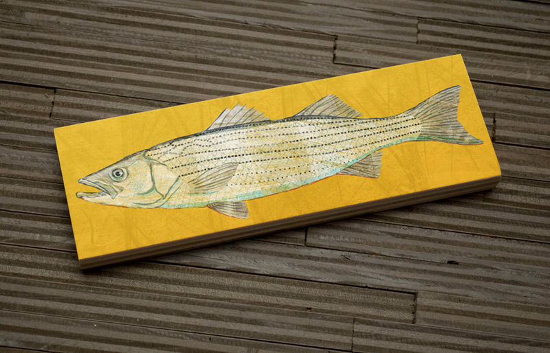 Freshwater Fish Art Medium Art Block - Striped Bass Print - 9 in x 3 in Fish Wall Decor Fisherman Gift - Fathers Day Gift for Dad - product images  of