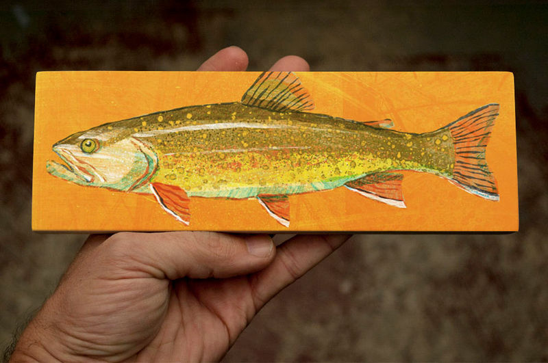 Freshwater Fish Art Series Medium Art Block - Brook Trout Art Print - 9 in x 3 in Fish Wall Decor Fisherman Gift - Fathers Day Gift for Dad - product images  of