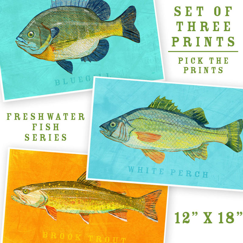 Fish Artwork - 3 Big Fishes - Set of 3 Prints 12 in x 18 in Kids Fish Art - Fish Decor - Man Cave Art - Lake House Art - Fathers Day Gift - product images  of