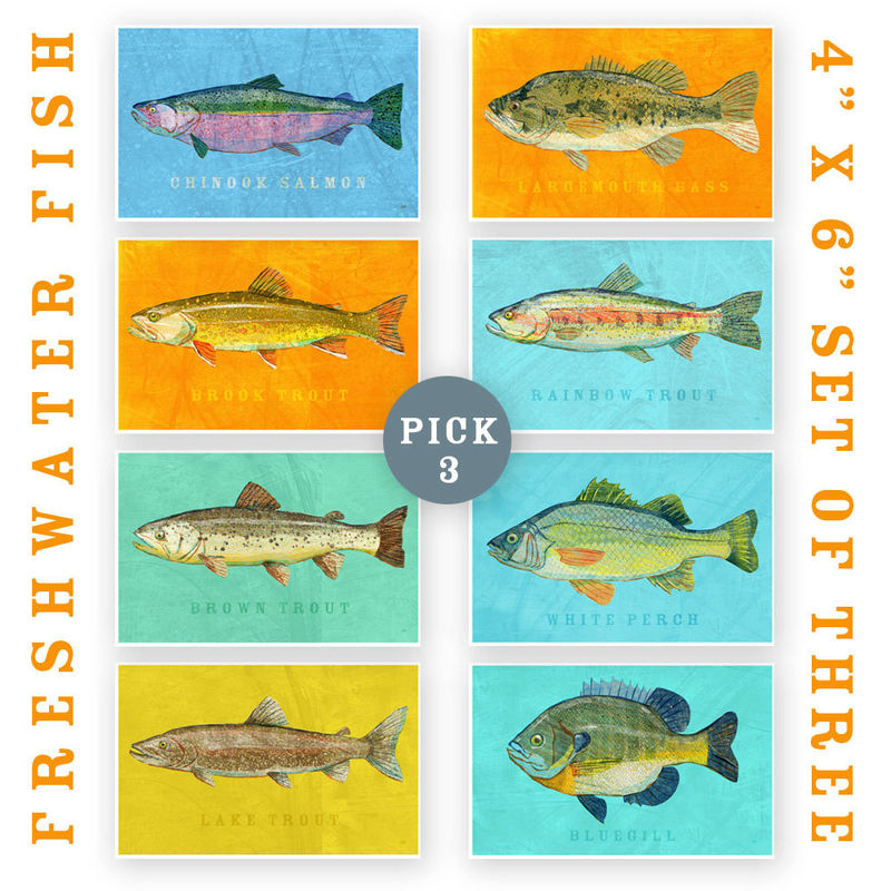 Fish Artwork - 3 Little Fishies - Set of 3 Prints 4 in x 6 in Kids Fish Art - Fish Decor - Man Cave Art - Lake House Art - Fathers Day Gift - product images  of