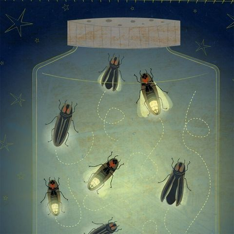 The,Enlightened,Fireflies,Print,8,in,x,10,Art,Illustration,digital,firefly,fireflies,cute,whimsical,blue,yellow,paper,ink