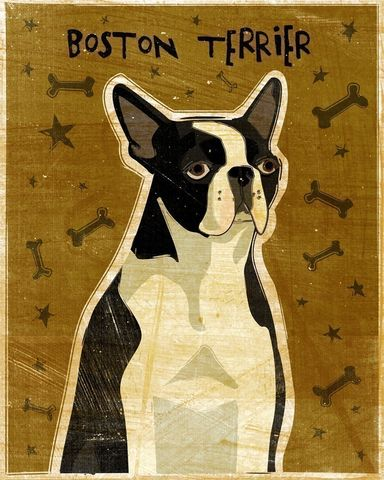 Boston,Terrier,Print,Art,Illustration,digital,whimsical,cute,dog,animals,animal,boston,terrier,paper,ink