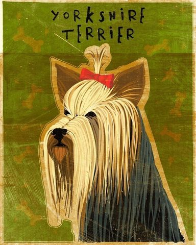 Yorkshire,Terrier,Print,8,in,x,10,Art,Illustration,digital,whimsical,cute,dog,animals,animal,terrier,yorkie,yorkshire,paper,ink