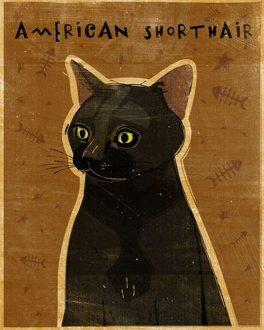 American,Shorthair,Black,Cat,Print,8,in,x,10,Art,Illustration,digital,whimsical,cute,animals,animal,cat,black,shorthair,paper,ink