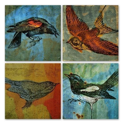 Bird,Collages,Set,of,4,Prints,5,in,x,Art,Collage,Digital,digital,collage,animal,bird,magpie,blackbird,warbler,sparrow,texture,camera,paper