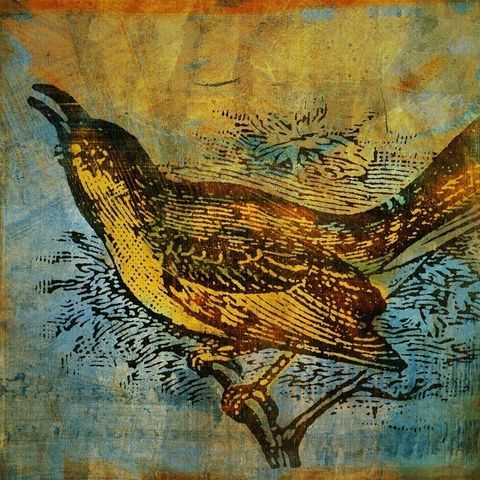 Mockingbird,No.,1,Print,8,in,x,Art,Mixed_Media,Altered,vintage,bird,johnwgolden,animal,print,mockingbird,camera,paper