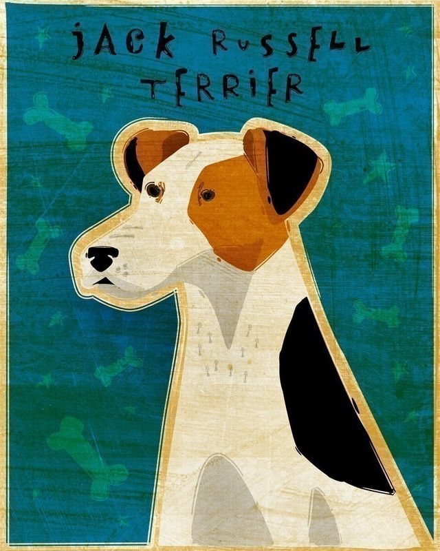Jack Russell Terrier - Dog Art - Print 8 in x 10 in - product images