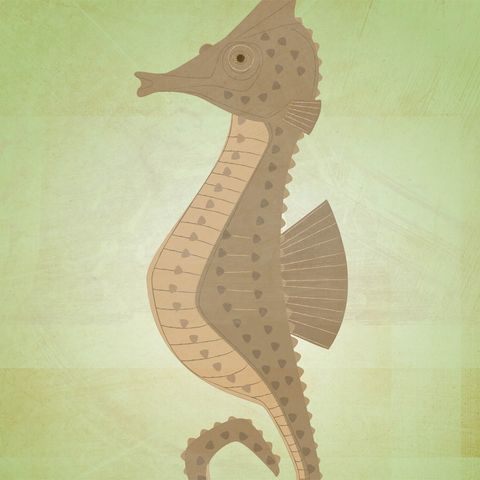 The,Patient,Seahorse,Print,Children,Art,illustration,print,digital,critter,johnwgolden,art,ocean,sea,seahorse,fish,nursery,green,brown,paper,ink