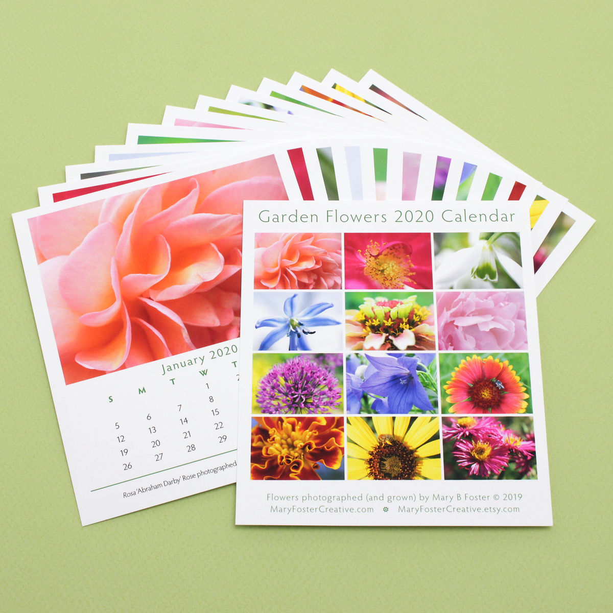 Garden Flowers Photography 2020 Desk Calendar with cd case easel stand - product images  of