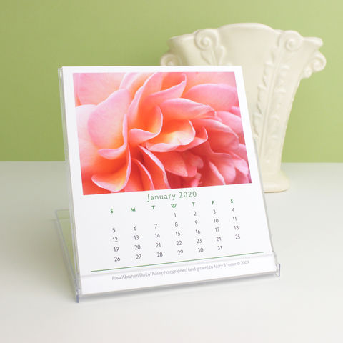 Garden,Flowers,Photography,2020,Desk,Calendar,with,cd,case,easel,stand,garden flowers photography 2020 desk calendar, small desktop calendar with cd case easel stand, macro floral photos, botanical nature art, Mary Foster Creative