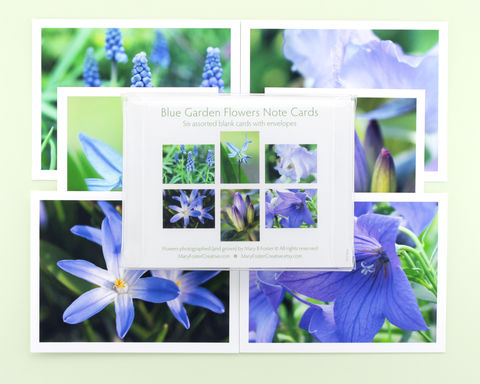 Blue,Garden,Flowers,Photo,Note,Cards,,boxed,assortment,of,6,paper goods, boxed note cards assortment, blue garden flowers photography, floral photo notecards, blank greeting cards pack, all occasion stationery set, nature photographs, botanical art, Mary Foster Creative