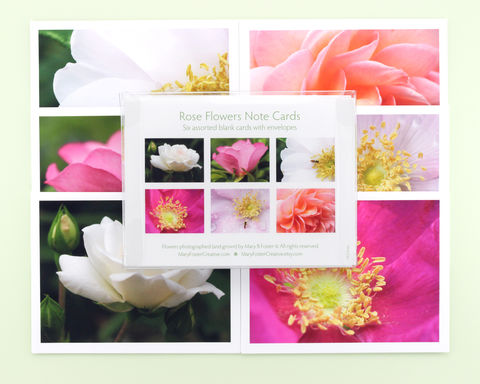 Rose,Flowers,Photo,Note,Cards,assortment,,boxed,pack,of,6,paper goods, stationery set, boxed note cards assortment, rose flower photography, floral photo notecards, blank greeting cards pack, all occasion stationery, nature photographs, botanical art, Mary Foster Creative