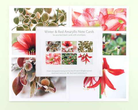 Winter,Holiday,Floral,Photo,Note,Cards,,Boxed,Set,of,Six,Paper Goods, Christmas Cards, boxed holiday stationery set of six, photo note cards assortment, blank note card pack, winter photography, floral photo cards, flower photography note cards, Mary Foster Creative