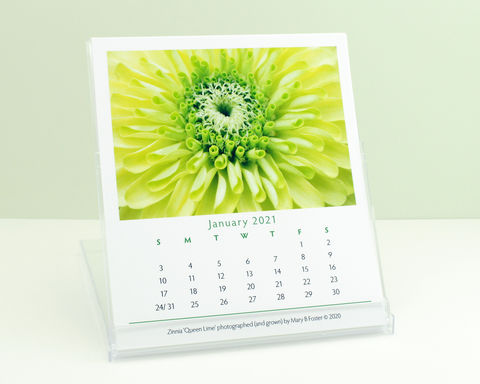 Garden,Flowers,Photography,2021,Desk,Calendar,with,cd,case,easel,stand,garden flowers photography 2021 desk calendar, small desktop calendar with cd case easel stand, macro floral photos, botanical nature art, Mary Foster Creative