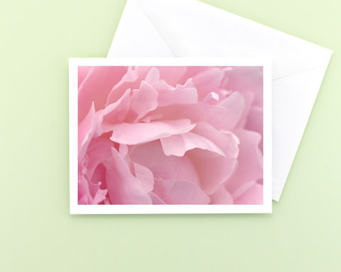 Pink,Peony,Flower,Petals,Photo,Note,Card,paper goods, stationery, note card, pink flower photography, floral photo notecard, blank greeting card, all occasion stationary, macro nature photograph, botanical art, Mary Foster Creative