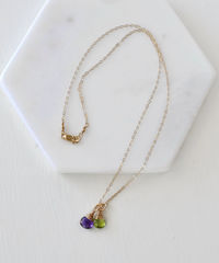 Two Birthstone Mothers Necklace in Gold Fill - product images 4 of 6