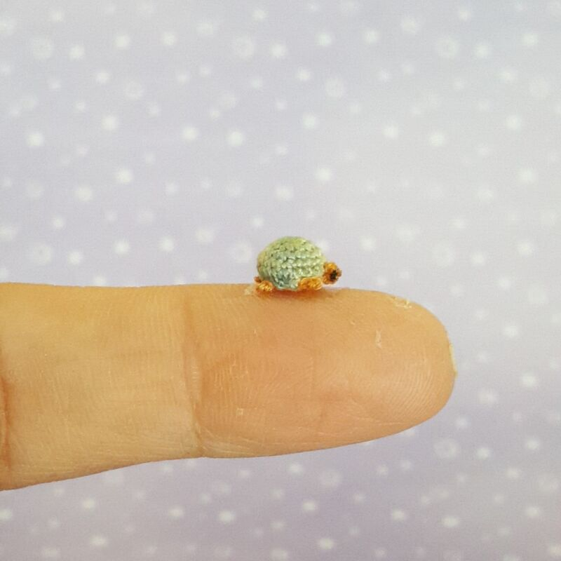 The Smallest Turtle Ever! - product images  of