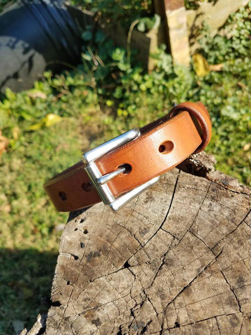 Leather,Dog,Collar,,Simple,Personalized,Collar,Pets