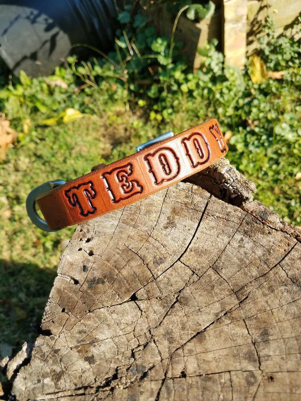 Leather Dog Collar, Simple Dog Collar, Personalized Dog Collar - product images  of