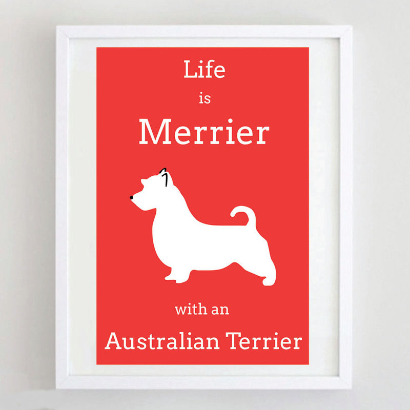 Australian Terrier Print  - product image