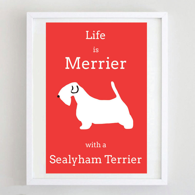 Sealyham Terrier Print  - product image